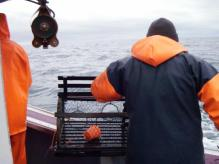 Hauling a trap during sea sampling