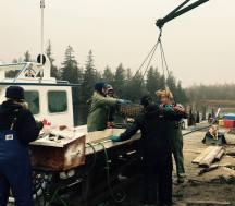 Processing lobster collectors in False Bay, Cape Breton