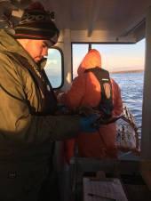 At-sea sampling with Brandon