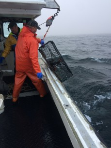 Long time Lobster Recruitment participant, Randy Boutilier, and his crew on a sea-sampling day in Tangier, NS