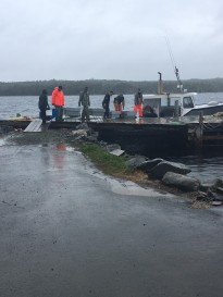 Teamwork during a rainy v-notching day in Mushaboom, NS