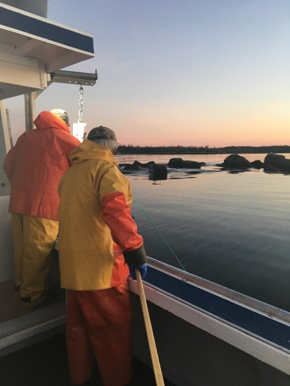 Fishermen getting ready to pull up traps during a sampling trip
